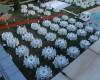 Kır Düğünü029